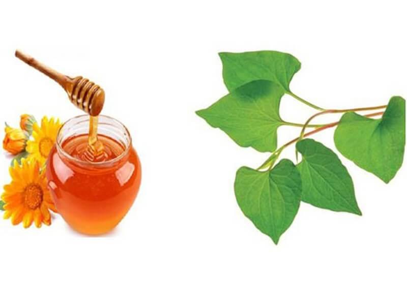 Dùng rau diếp cá kết hợp với mật ong sẽ nhận được hỗn hợp giúp tẩy tế bào chết và trị mụn hiệu quả