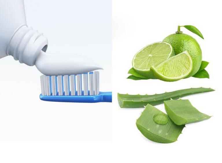 Kem đánh răng, chanh và nha đam là những nguyên liệu sẵn có, dễ tìm nhưng có công dụng rất tốt