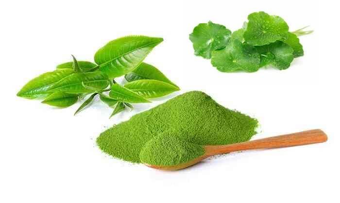 Rau má và trà xanh là các thành phần rất hiệu quả trong việc tiêu viêm, giảm sưng