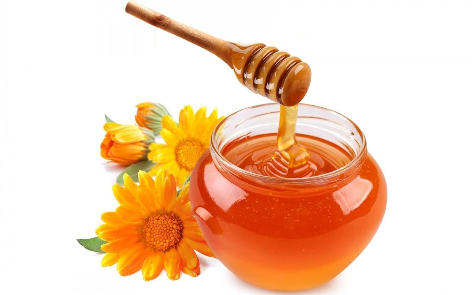 Trong mật ong chứa nhiều chất kháng khuẩn giúp đánh bay đi mụn ẩn