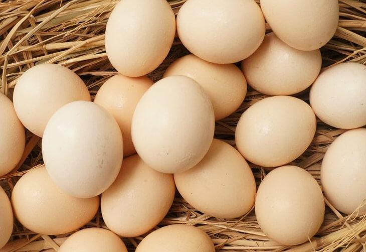 Phương pháp dùng trứng gà giúp cho chữa trị mụn đầu đen