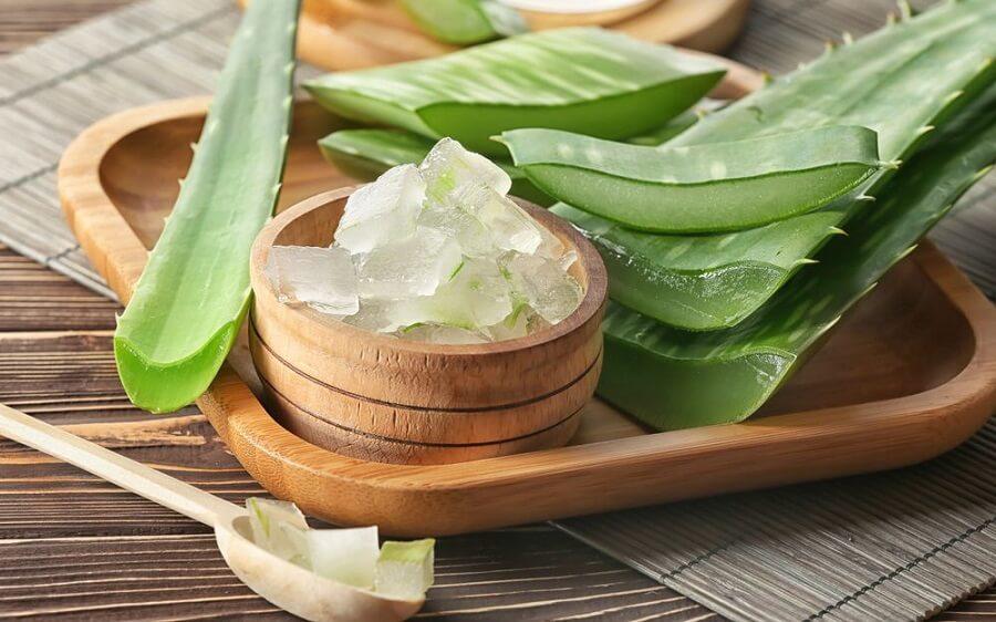 Bản thân nha đam là một loại thảo dược liệu có khả năng điều trị mụn đầu đen trên da