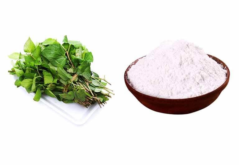Sử dụng bột gạo kết hợp với rau diếp cá sẽ góp phần ngăn chặn kịp thời được bụi bẩn tích tụ ở vùng lỗ chân lông