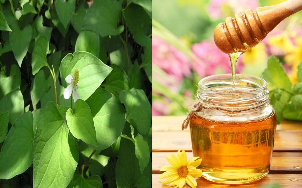 Axit amin và vitamin chứa trong mật ong làm nhiệm vụ loại bỏ đi tế bào chết, hỗ trợ nâng tông da hiệu quả
