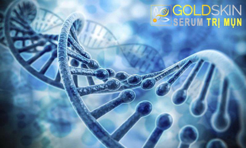 Bệnh da vảy cá chủ yếu là do di truyền