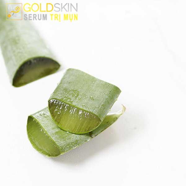 Lớp gel của nha đam có nhiều vitamin và khoáng chất cần thiết cho da mụn