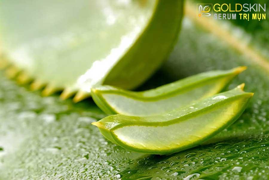 Cách sử dụng nha đam dưỡng ẩm, làm sáng da và trị mụn ẩn ở 2 má