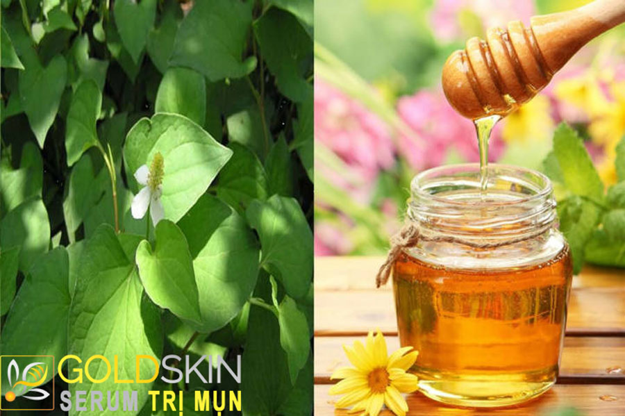 Mật ong có tính kháng khuẩn, kháng viêm và trị mụn rất hiệu quả.