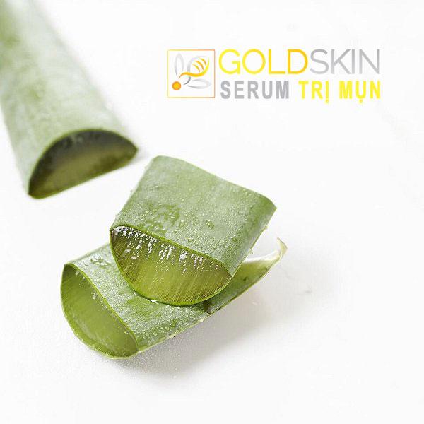 Lớp gel của nha đam chứa khá nhiều thành phần vitamin và các khoáng chất cần thiết đối với làn da bị mụn